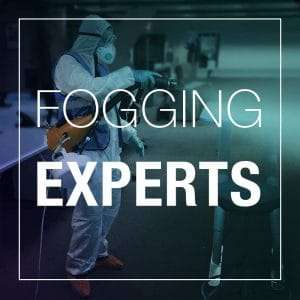 FOGGING EXPERTS
